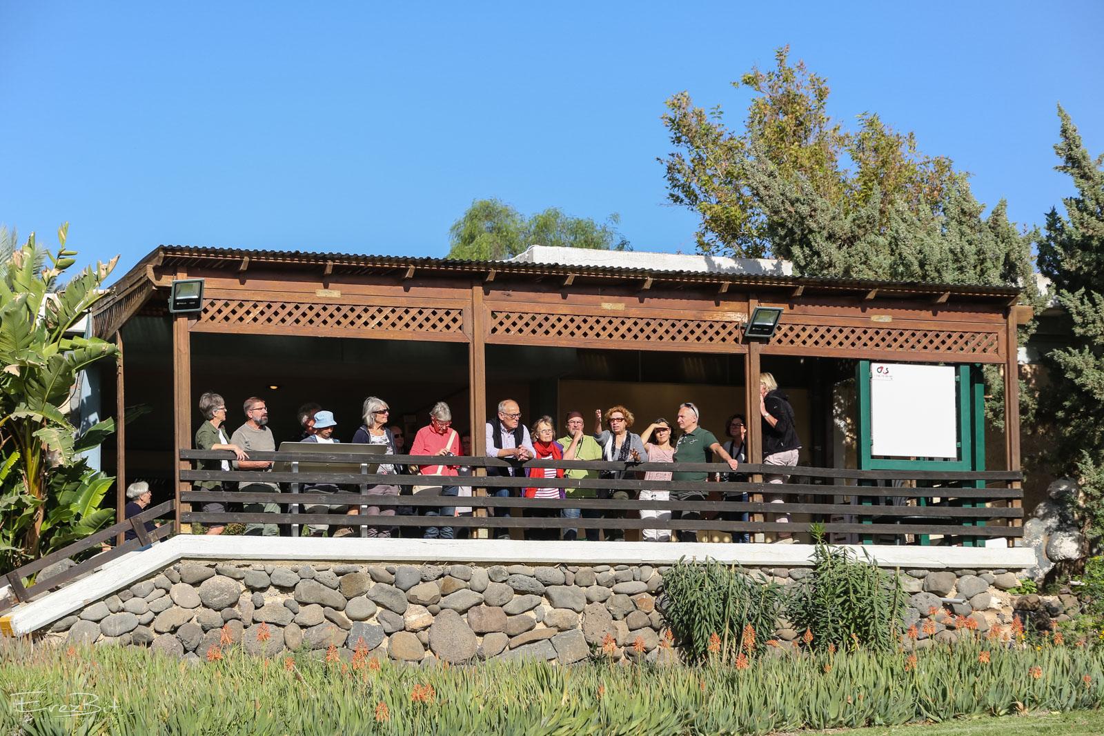 תיירים במרפסת המוזיאון